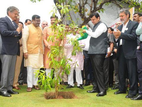 plantation-programe-probe-ajit-pawar-announces-probe-in-33-crore-plantation-programe-in-devendra-fadnavis-regime-after-congress mla-nana-patole-demand